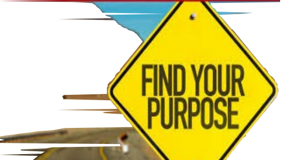Life: What is your purpose?